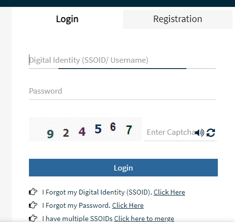 Login From